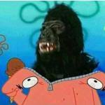 Gorilla in Patrick Suit