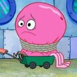 Jeffrey Jellyfish