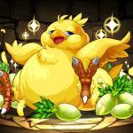 Capricious Summon, Fat Chocobo