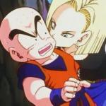 Krillin x Android 18