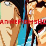 AnimeFightsHD
