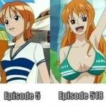 Nami - Breast Size Change