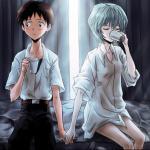 Shinji Ikari & Rei Ayanami