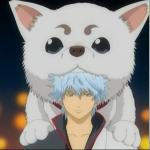 Gintoki and Sadaharu